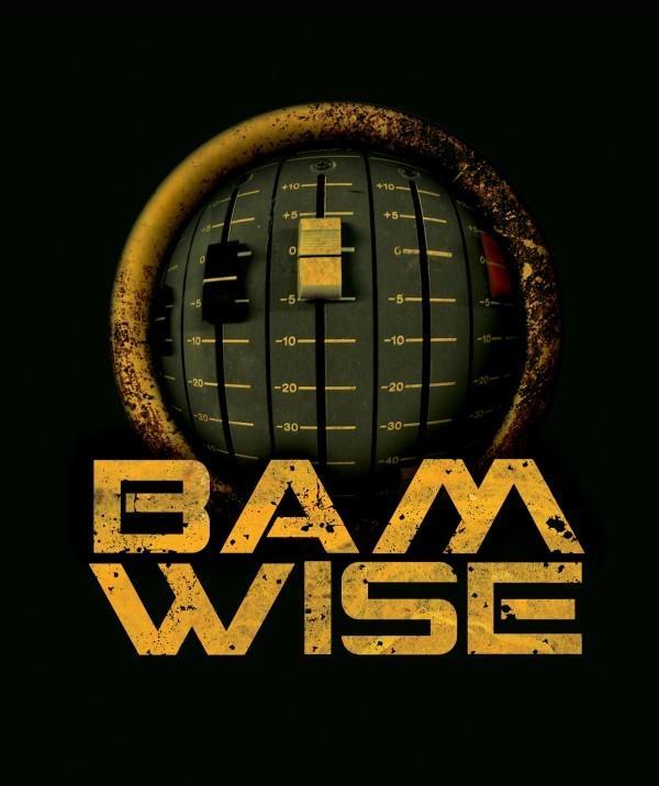 bamwise_logo